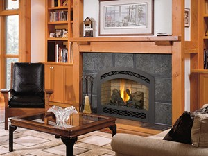 FireplaceXtrodinair 564 Space Saver Fireplace