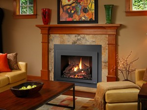 FireplaceXtrordinair 616 Gas Fireplace Insert